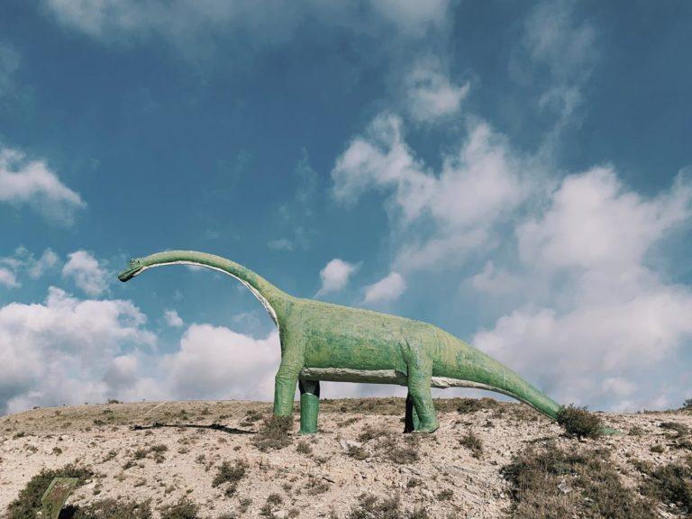 Nowa atrakcja – park dinozaurów
